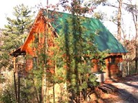 Honeymoon cabin in Pigeon Forge, Tn.